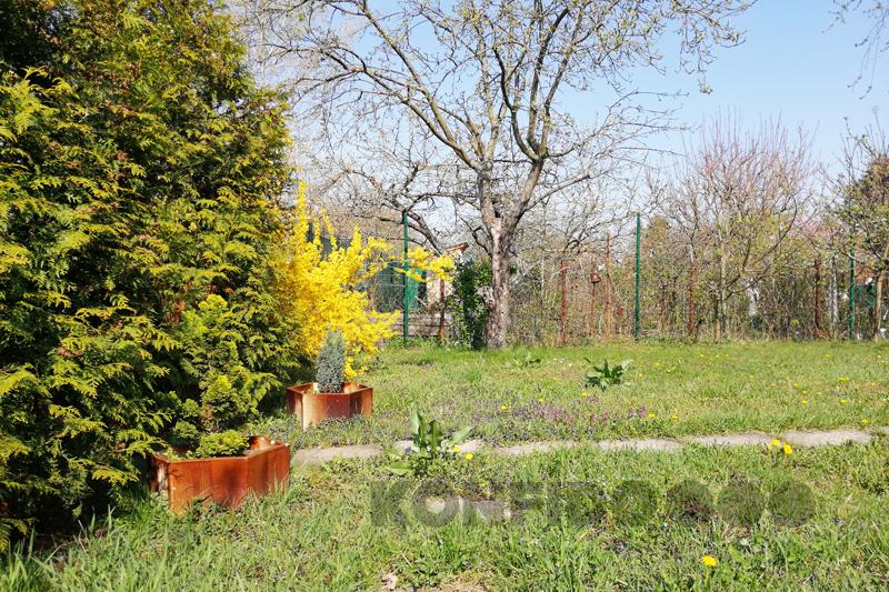 Bratislava Konfido 11 Zlate piesky zahrada pohlad na vstup do zahrady slnecny pozemok copy